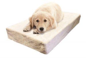 matelas pour chien à mémoire de forme