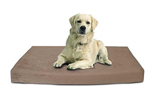 coussin memoire de forme pour chien