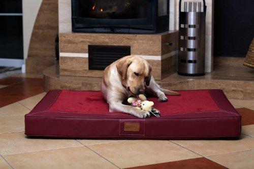 matelas à mémoire de forme pour chien